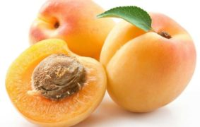 How to dry Apricots Fruit?