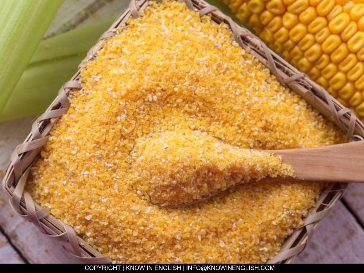 You are currently viewing What is cornmeal?